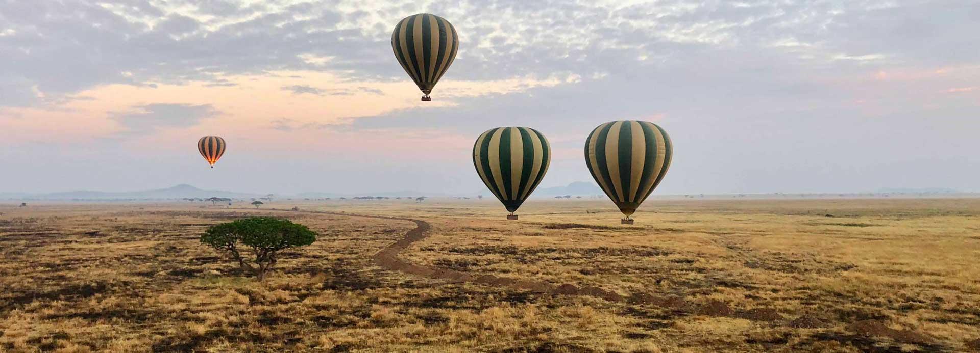 Hot Air Balloon Ride Safari